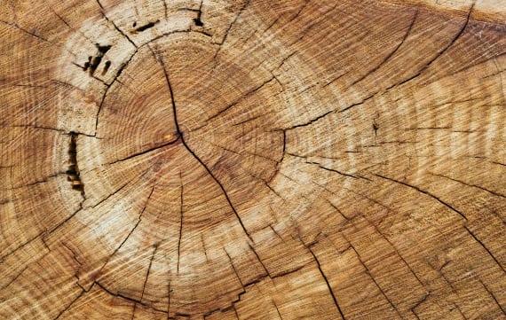 Circulair hout